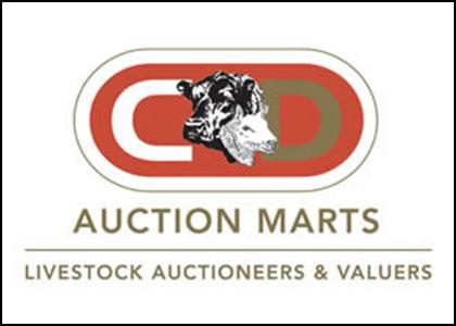 Auction Finder